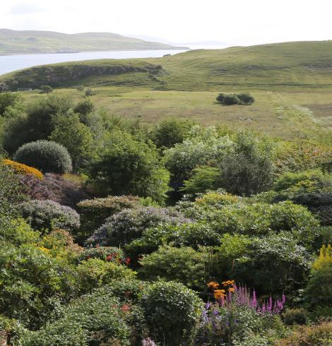 glorious-garden
